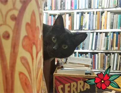Bookplate bookstore cat